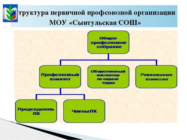Структура первичной профсоюзной организации МОУ «Сынтульская СОШ»