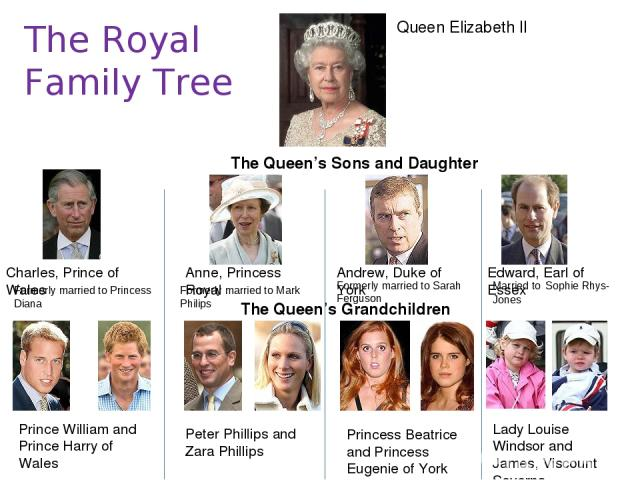 The Royal Family Tree Queen Elizabeth II The Queen's Sons and Daughter Charles, Prince of Wales Anne, Princess Royal Andrew, Duke of York Edward, Earl of Essex The Queen's Grandchildren Prince William and Prince Harry of Wales Peter Phillips and Zar…