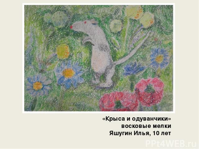 «Крыса и одуванчики» восковые мелки Яшугин Илья, 10 лет