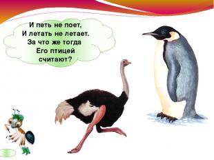 Ипеть непоет, Илетать нелетает. Зачтоже тогда Его птицей считают?
