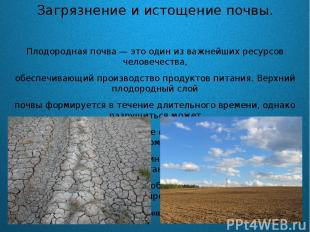 Загрязнение и истощение почвы. Плодородная почва — это один из важнейших ресурсо