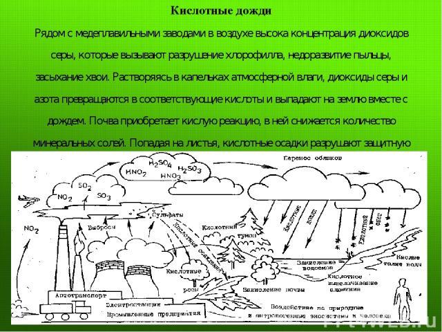 Кислотные дожди Рядом с медеплавильными заводами в воздухе высока концентрация диоксидов серы, которые вызывают разрушение хлорофилла, недоразвитие пыльцы, засыхание хвои. Растворяясь в капельках атмосферной влаги, диоксиды серы и азота превращаются…