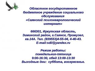 Областное государственное бюджетное учреждение социального обслуживания «Сая