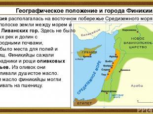 Географическое положение и города Финикии. Финикия располагалась на восточном по