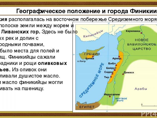 Географическое положение и города Финикии. Финикия располагалась на восточном побережье Средиземного моря на узкой полоске земли между морем и цепью Ливанских гор. Здесь не было крупных рек и долин с плодородными почвами, мало было места для полей и…