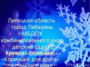 Липецкая область город Лебедянь МБДОУ комбинированного вида детский сад №2 групп