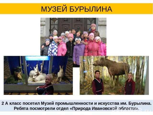 МУЗЕЙ БУРЫЛИНА 2 А класс посетил Музей промышленности и искусства им. Бурылина. Ребята посмотрели отдел «Природа Ивановской области».