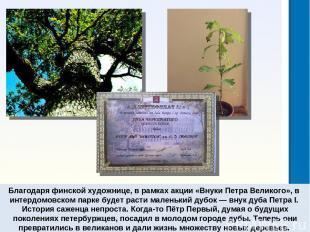Благодаря финской художнице, врамках акции «Внуки Петра Великого», в интердомов