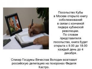 Спикер Госдумы Вячеслав Володин возглавит российскую делегацию на похоронах Фиде