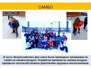 В честь Всероссийского Дня снега была проведена тренировка по самбо на свежем во