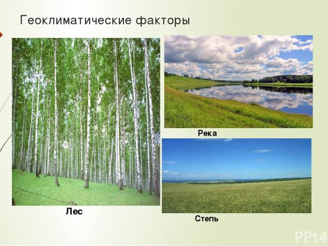 Геоклиматические факторы Лес Река Степь