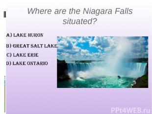 Where are the Niagara Falls situated?