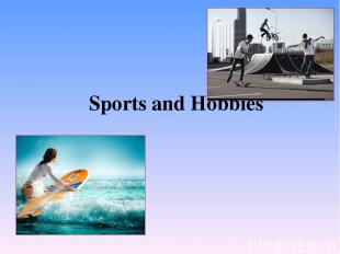 Sports and Hobbies