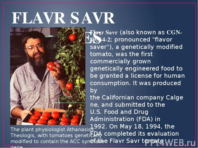 FLAVR SAVR TOMATOES Flavr Savr (also known as CGN-89564-2; pronounced