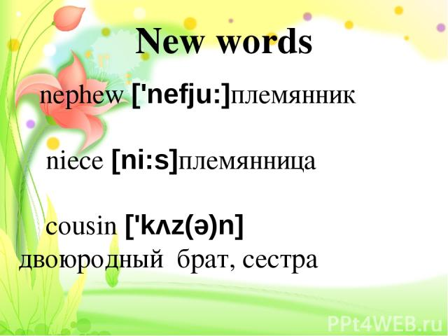 New words nephew ['nefju:]племянник niece [ni:s]племянница cousin ['kʌz(ə)n] двоюродный брат, сестра