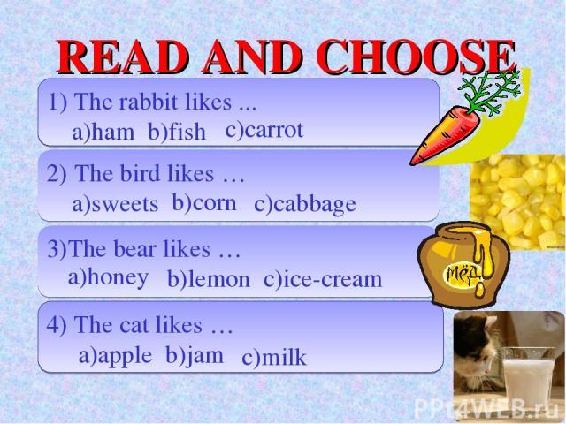 READ AND CHOOSE 1) The rabbit likes ... a)ham b)fish 2) The bird likes … a)sweets c)cabbage 3)The bear likes … b)lemon c)ice-cream 4) The cat likes … a)apple b)jam c)carrot b)corn a)honey c)milk