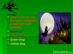 Which animals are the most commonly associated with witches? Black cat Red panda