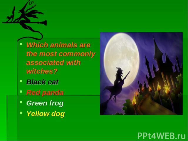 Which animals are the most commonly associated with witches? Black cat Red panda Green frog Yellow dog