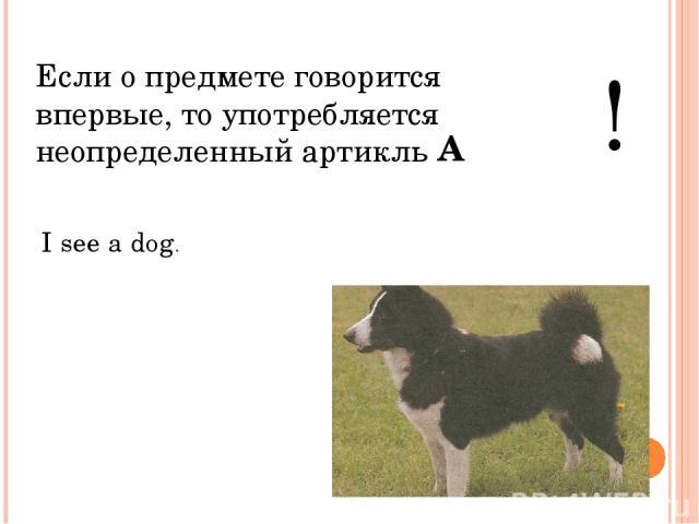 Если о предмете говорится впервые, то употребляется неопределенный артикль ! I see a dog. A