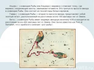 Альфа (α) созвездия Рыбы или Альриша («веревка») отмечает точку, где веревки, со