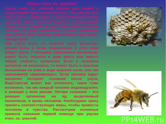 Укусы пчел, ос, шмелей Укусы пчел, ос, шмелей опасны для людей с повышенной чувствительностью к их укусам (это могут быть и взрослые с чувствительной кожей, но чаще всего чувствительны к укусам дети). Также укусы опасны, в том случае, если человека …
