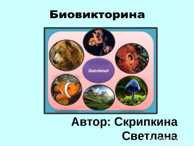 Биовикторина Автор: Скрипкина Светлана Валентиновна, учитель биологии МБОУ ОСШ № 3 г. Нягань