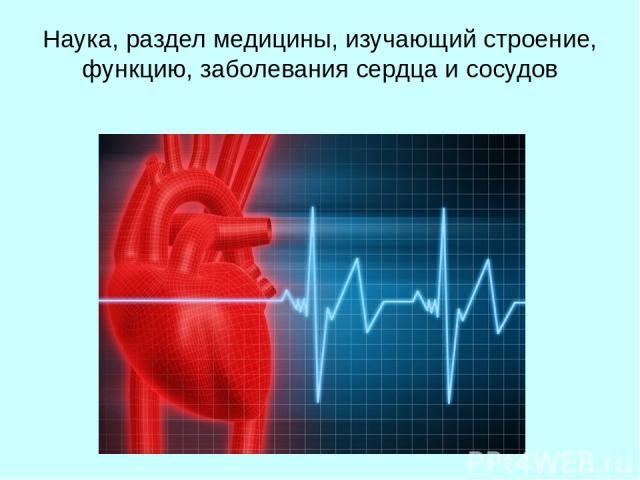 Наука, раздел медицины, изучающий строение, функцию, заболевания сердца и сосудов