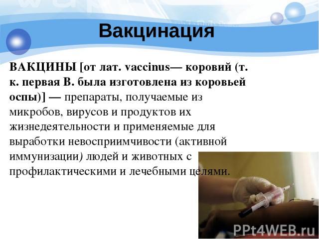 Вакцинация ВАКЦИНЫ [от лат. vaccinus— коровий (т. к. первая В. была изготовлена из коровьей оспы)] — препараты, получаемые из микробов, вирусов и продуктов их жизнедеятельности и применяемые для выработки невосприимчивости (активной иммунизации) люд…