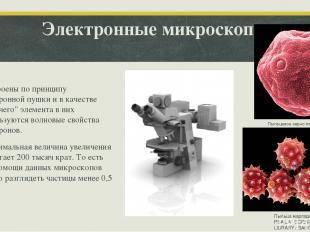 """Электронные микроскопы Построены по принципу электронной пушки и в качестве """"раб"""
