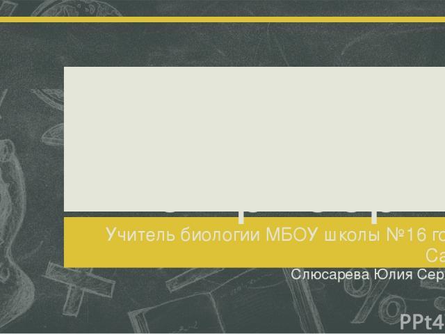 Увеличительные приборы Учитель биологии МБОУ школы №16 города Сарова Слюсарева Юлия Сергеевна