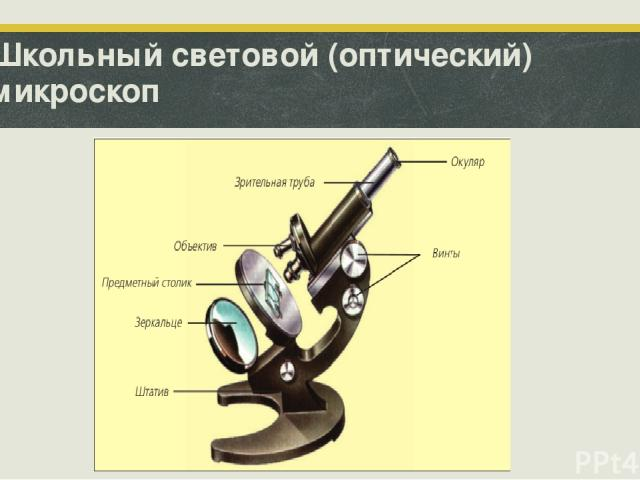 Школьный световой (оптический) микроскоп