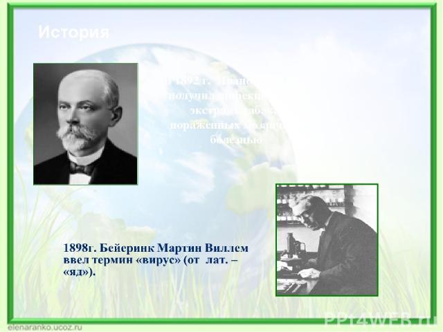 История В 1892 г. Ивановский Д.И. получил инфекционный экстракт табака, пораженных мозаичной болезнью