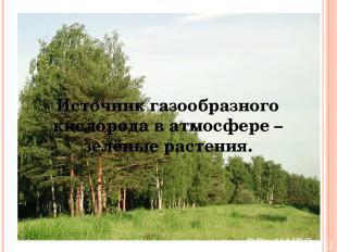 Источник газообразного кислорода в атмосфере – зелёные растения.