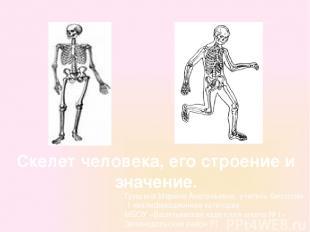 Скелет человека, его строение и значение. Гришина Марина Анатольевна, учитель би