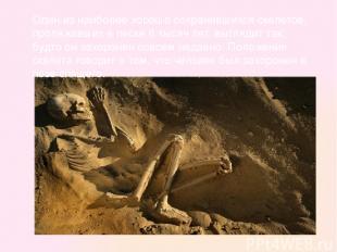 Один из наиболее хорошо сохранившихся скелетов, пролежавших в песке 6 тысяч лет,