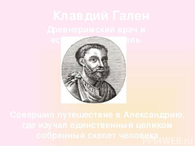 Клавдий Гален Древнеримский врач и естествоиспытатель Совершил путешествие в Александрию, где изучал единственный целиком собранный скелет человека