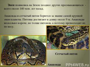 Змеи появились на Земле позднее других пресмыкающихся - всего около 140 млн. лет