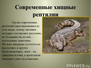 Современные хищные рептилии Среди современных рептилий (пресмыкающихся) есть вид