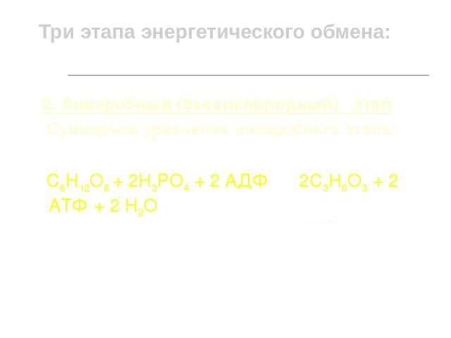 Три этапа энергетического обмена: 2. Анаэробный (бескислородный) этап Суммарное уравнение анаэробного этапа: С6Н12О6 + 2Н3РО4 + 2 АДФ 2С3Н6О3 + 2 АТФ + 2 Н2О